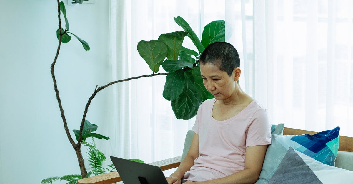 A person sitting at a table using a laptop computer